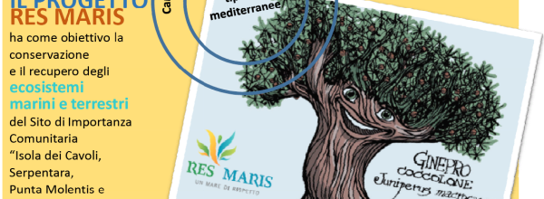 Campaign for replacement of alien plants with typical Mediterranean species